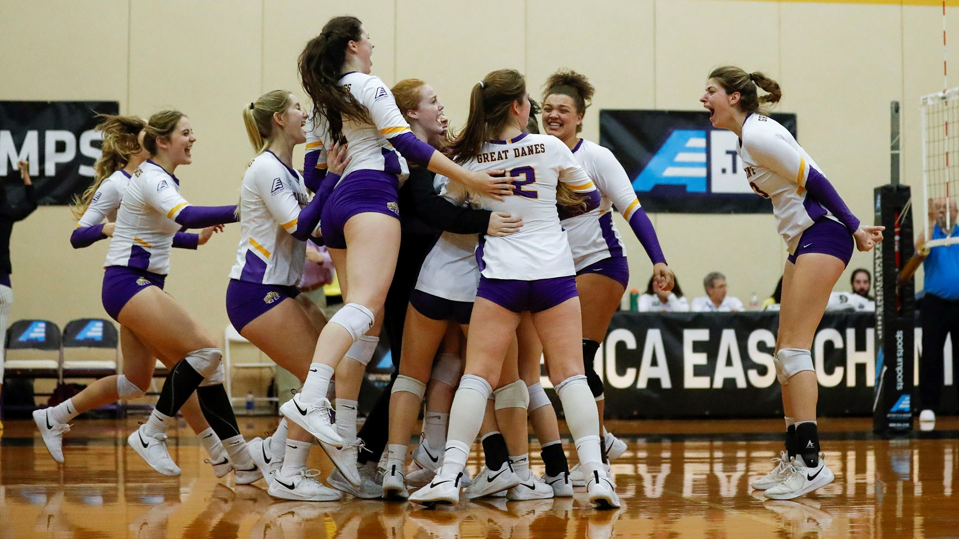 Women S Volleyball University At Albany Great Danes